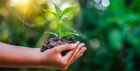 22 kwietnia – Międzynarodowy Dzień Ziemi